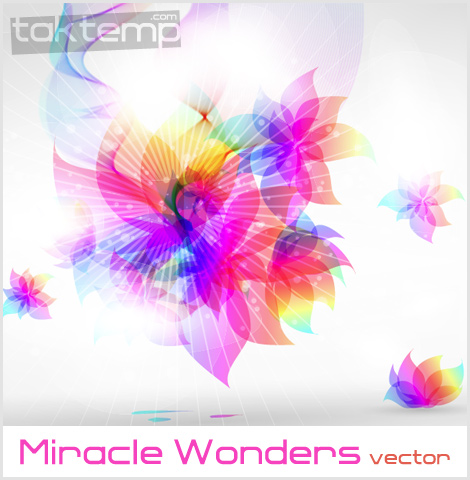 Miracle_Wonders